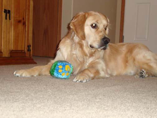 Dillon and the stuffed ball