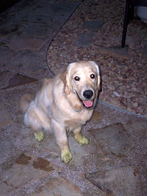Green Feet, Helping Dad mow